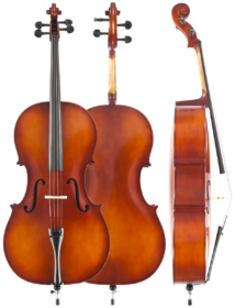 aaavmodel-80-cello-2012-copy