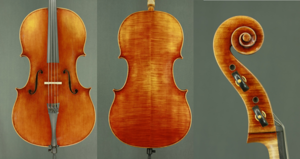 mjz-cello-gof-model