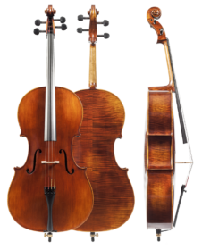 model-sacconi-aaa-cello-20154