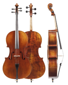 model-sacconi-plus-cello-2015-copy